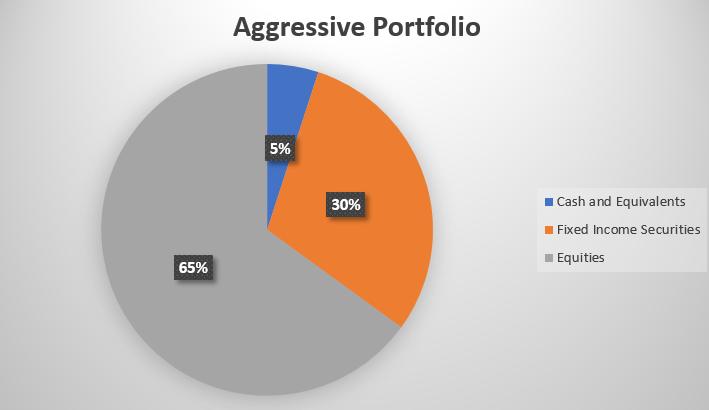 Aggressive Investment Portfolio