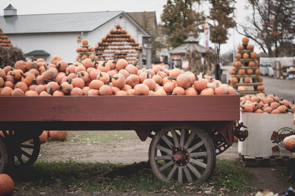 Pumpkin Patch Cart