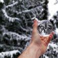 Snow Globe Ornament Scrooge