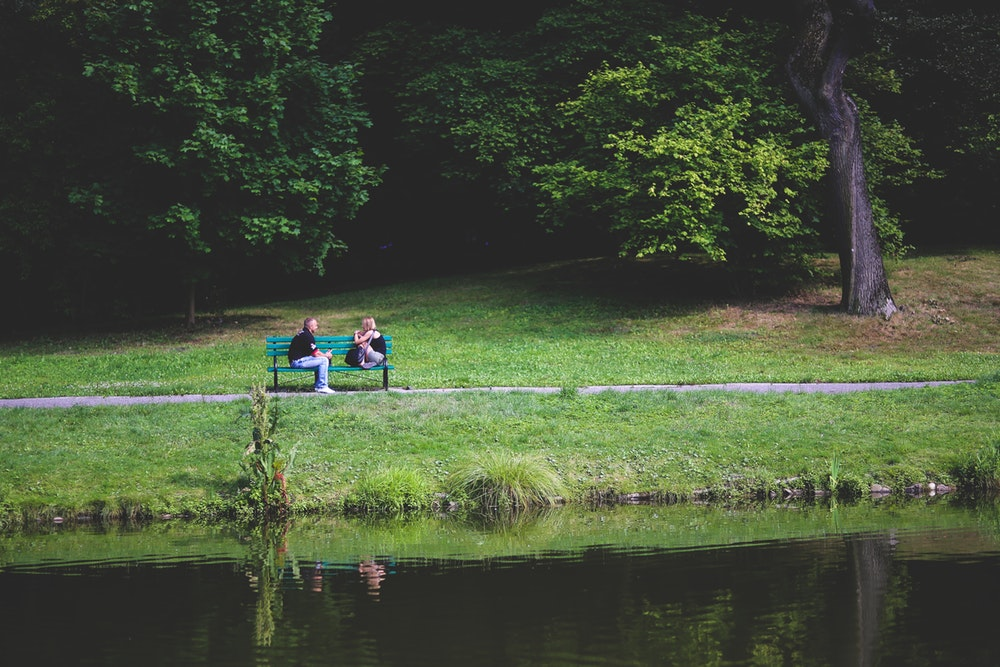 couple on bench by pond on a date